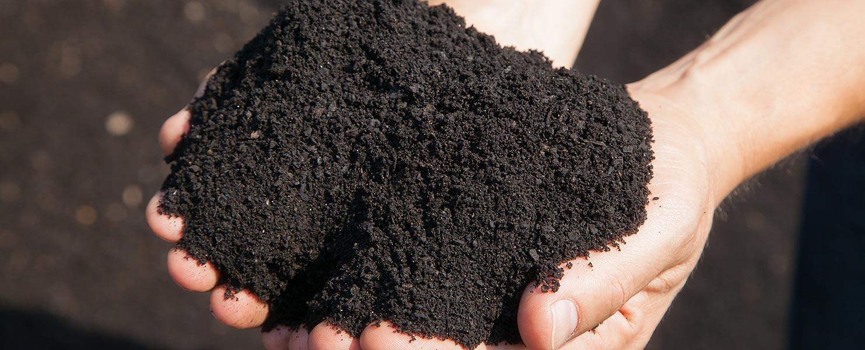 Leonardit: Bodenverbesserer und Wurzelaktivator
