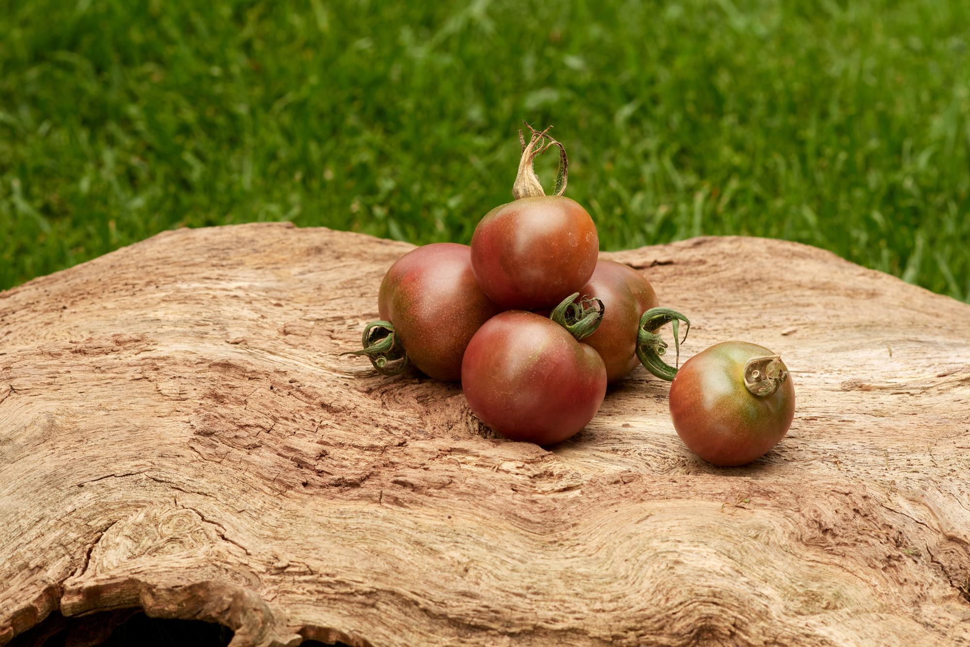 Tomate: Black Cherry