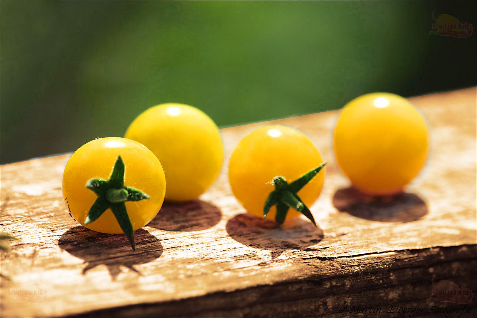 Tomate: Cherry Bianca