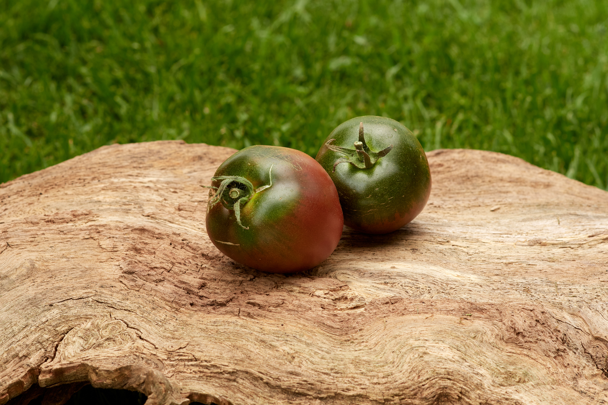 Tomate: Paul Robeson